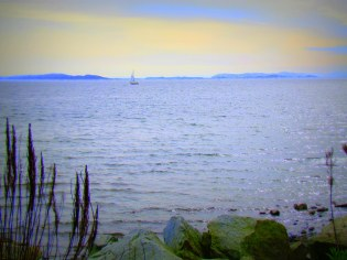 Lonley Sailboat II - Photography